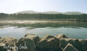 parque point lobos california